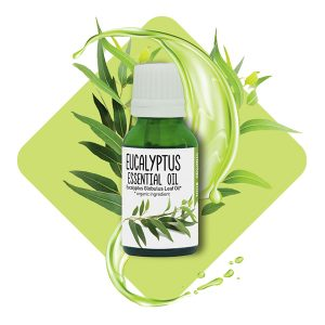 Eucalyptus<br> Essential oil