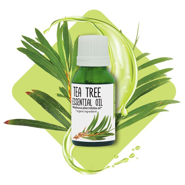 Tea Tree <br>essential oil