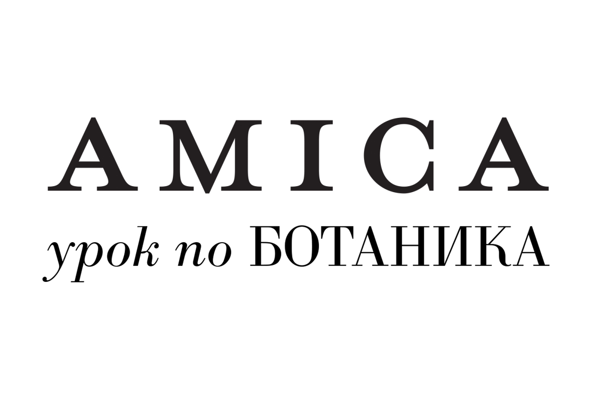 ELFEYA With AMICA Magazine - A Lesson In Botaincs